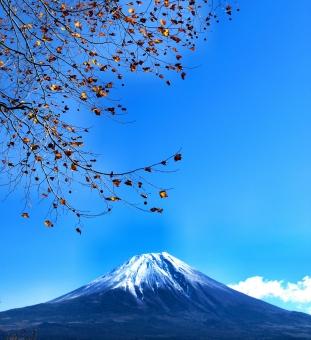 和風デザイン 富士山